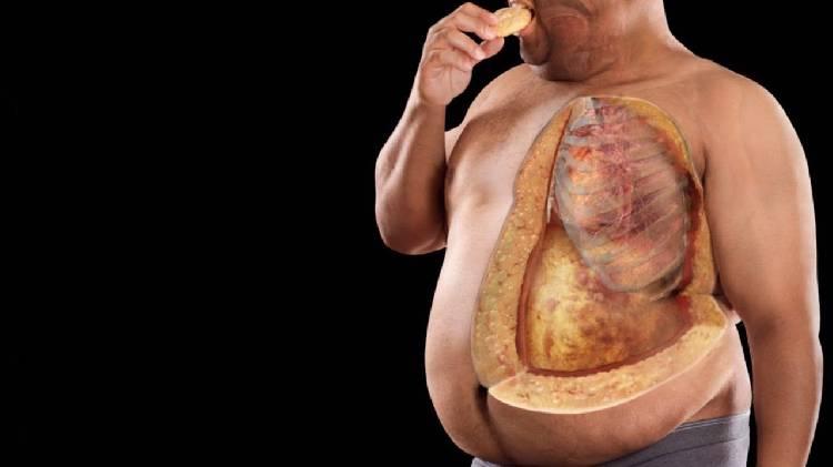Сожги Жир Накорми Мышцы. Как сжигать жир, а не мышцы: строгая диета для сохранения мышц при похудении