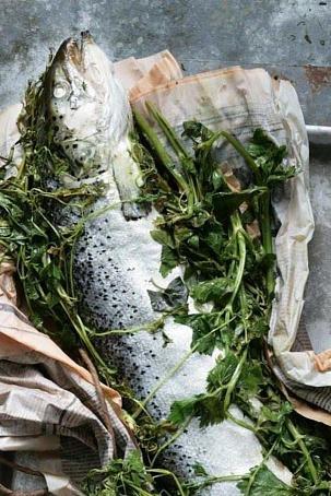 Запеченный нагриле лосось сзеленью, pаgtxtyysq yаuhbkt kjcjcm cptktym.